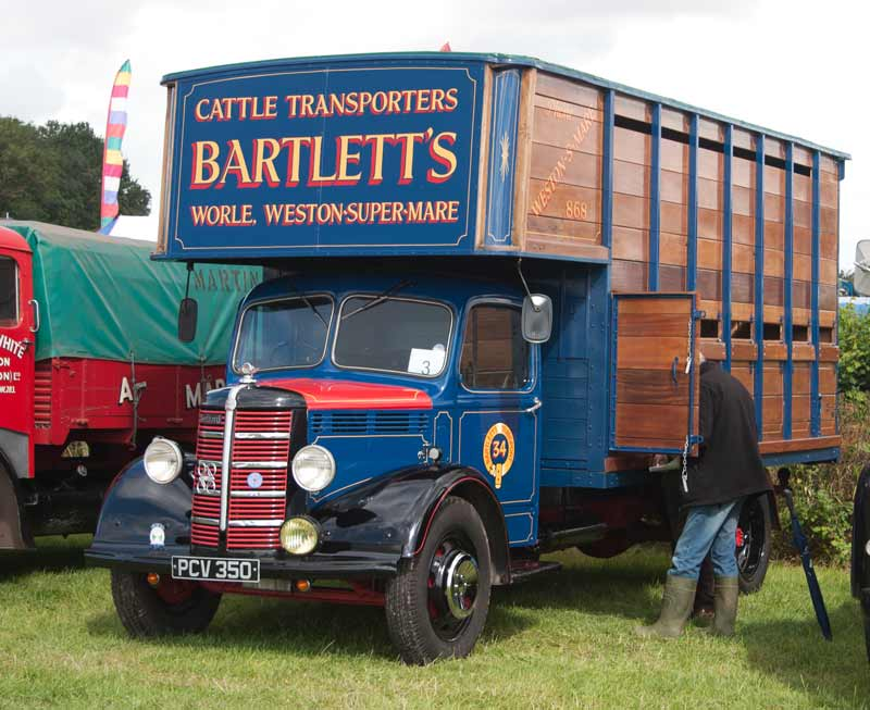 1952 Bedford O cattle wagon